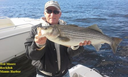 TW's Bait & Tackle, TW's Daily fishing Report. 11/23/15