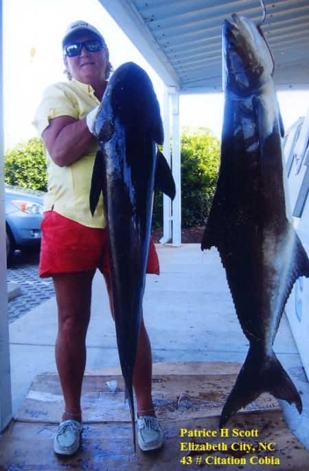 TW's Bait & Tackle, TW's Daily Fishing Report. 6/4/15