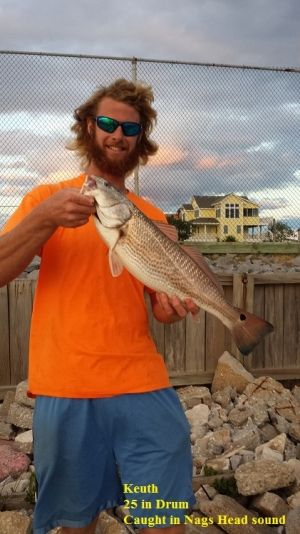 TW's Bait & Tackle, TW's Daily fishing Report. 10/17/14