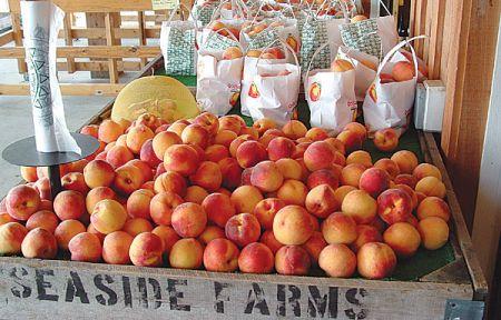 Seaside Farm Market Corolla, Fresh Fruit