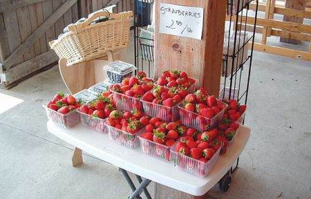 Seaside Farm Market Corolla, Strawberries