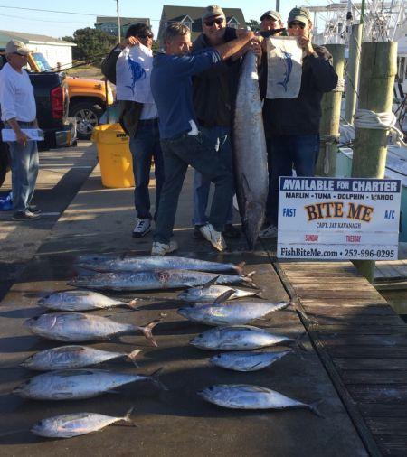 Bite Me Sportfishing Charters, Blue Marlin, Sail, 92# hoo, blackfin tuna oh boy