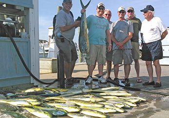 Tuna Duck Sportfishing, Plentiful Mahi