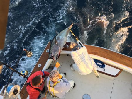 Carolina Girl Sportfishing Charters Outer Banks, Now booking for 2017!