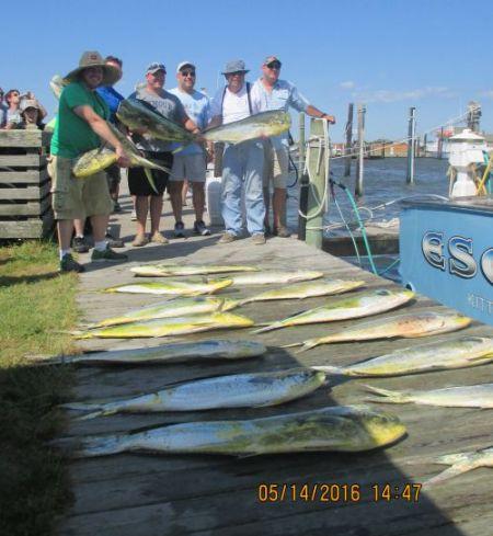 Oregon Inlet Fishing Center, Boat load after boat load!!