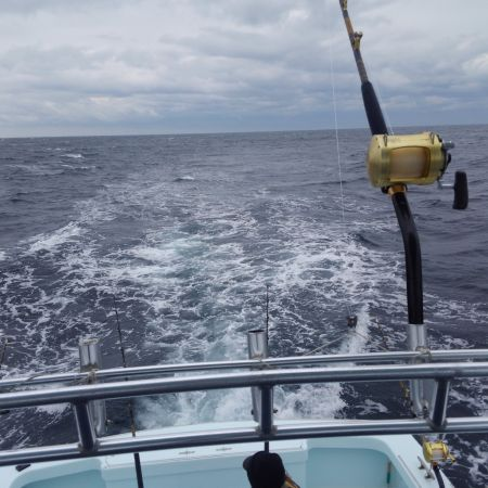 Tuna Duck Sportfishing, Trolling for Bluefin Tuna
