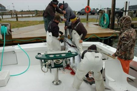 Oceans East Bait & Tackle Nags Head, Slow Fishing