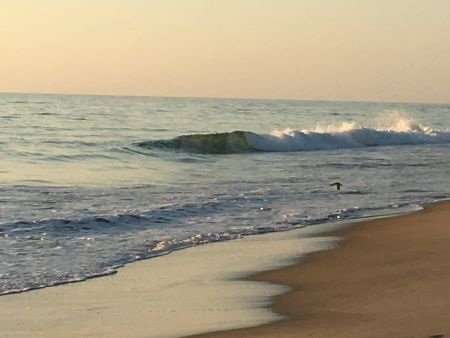 Outer Banks Boarding Company, OBBC Monday August 12th