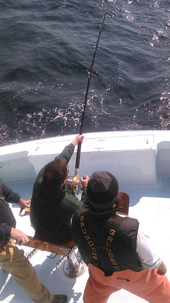 Tuna Duck Sportfishing, Bluefin Fight Today