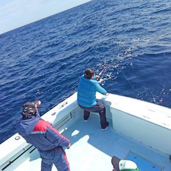 Tuna Duck Sportfishing, Good Top Water Action