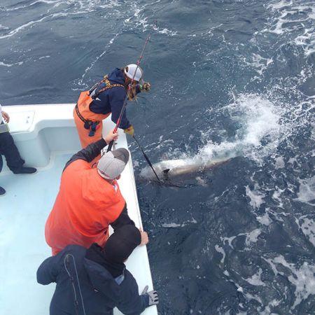 Tuna Duck Sportfishing, Varied Tunas!