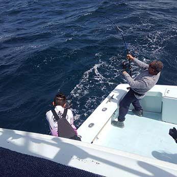 Tuna Duck Sportfishing, Giant Bluefin Tuna