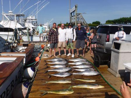 Pirate's Cove Marina, Great Day of Tuna Fishing!