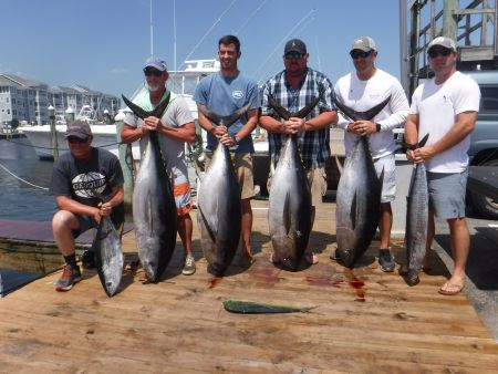 Pirate's Cove Marina, Wahoo ,Tile Fish and BIG Eye Tuna Fillin' the Boxes Today!