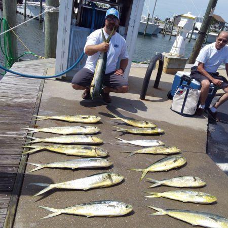 Tuna Duck Sportfishing, Bailer Dolphin