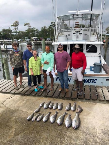 Wanchese Marina, Great Weather - Great Fishing here in OBX
