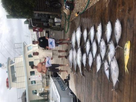 Pirate's Cove Marina, Alice Kelly Kick-Off and Tuna!!