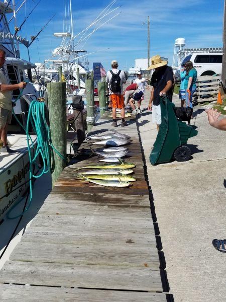 Fishin' Fannatic, Great Fishing the Past Few Days