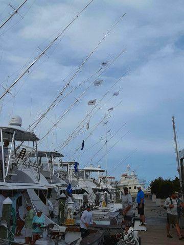 Pirate's Cove Marina, Labor Day Fishing...