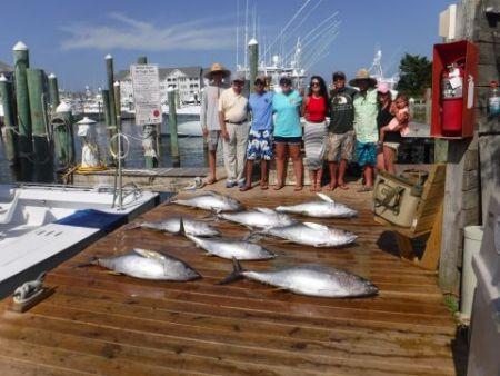 Pirate's Cove Marina, Tunas and White Marlin!