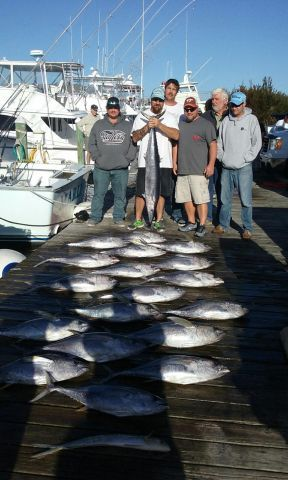 Pirate's Cove Marina, TUNA FEVER!