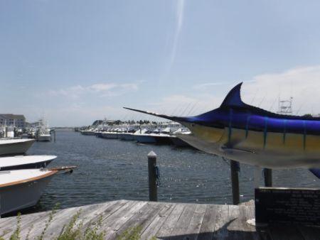 Pirate's Cove Marina, High Winds and High Seas Inhibiting Fishing