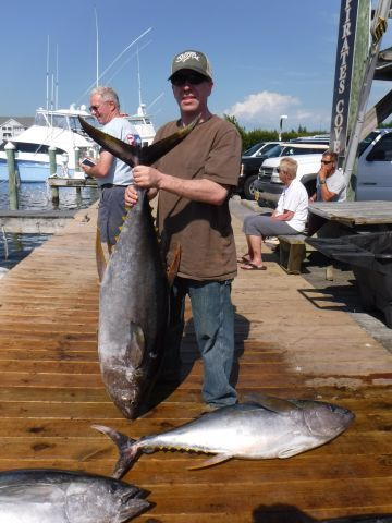 Pirate's Cove Marina, Tuna Haul!