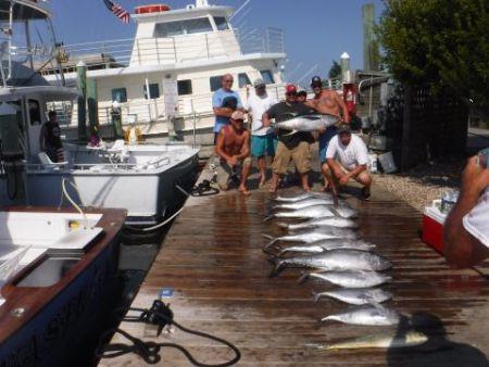 Pirate's Cove Marina, Tuna and Billfish!