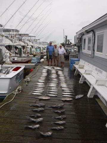 Pirate's Cove Marina, Mackerel and Billfish!