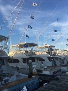 Pirate's Cove Marina, Flags