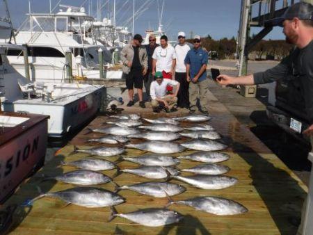 Pirate's Cove Marina, Limits of Yellowfin Tuna