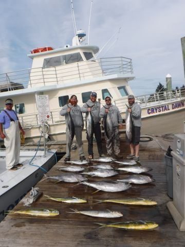 Pirate's Cove Marina, The Tuna and Dolphin are Biting!
