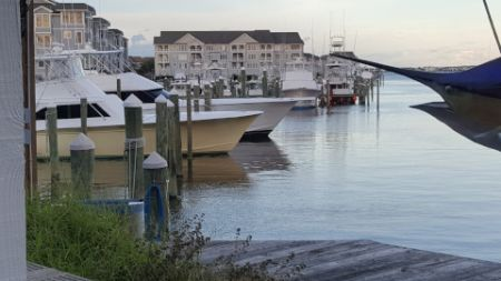 Pirate's Cove Marina, Florence Update....