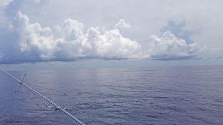 Tuna Duck Sportfishing, Beautiful Day in the Gulf Stream