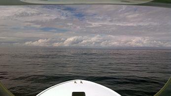 Tuna Duck Sportfishing, Wahoo and Mahi