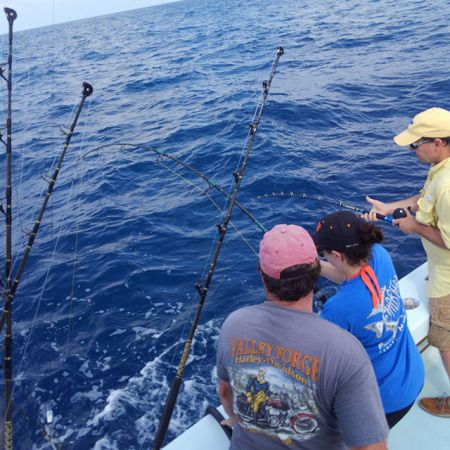 Tuna Duck Sportfishing, Dolphin, Wahoo, and Trigger