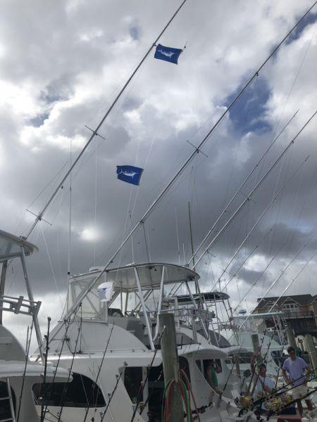 Bite Me Sportfishing Charters, Hatteras Grand Slam Tournament Day Two Report