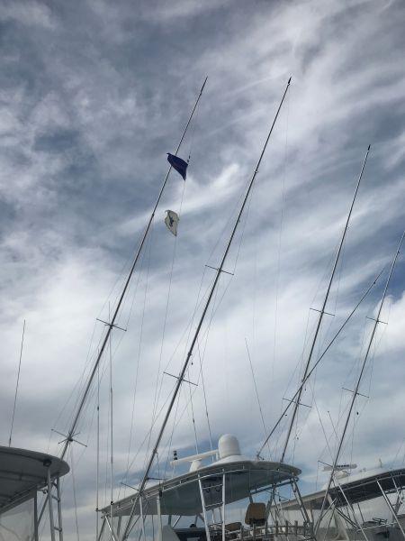 Pirate's Cove Marina, It's Tournament Time!