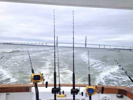 Fishin' Fannatic, Tuna Have Arrived
