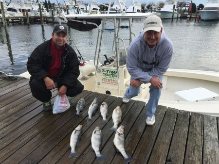 T-Time Charters, Mark and Mike's fish from a couple weeks ago
