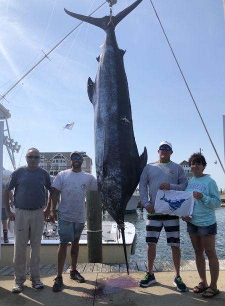 Bite Me Sportfishing Charters, 596 lbs
