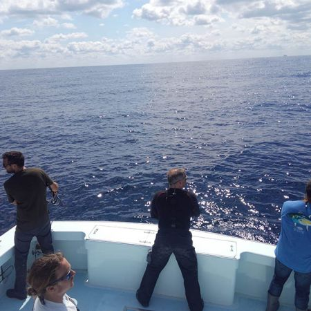 Tuna Duck Sportfishing, Still Shore-bound
