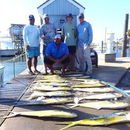 Tuna Duck Sportfishing, Dolphin!