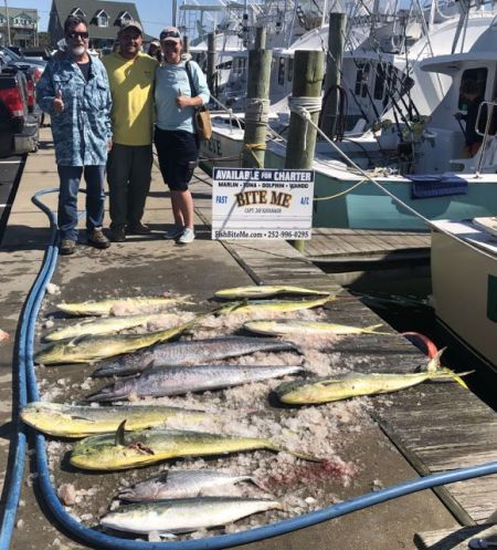 Bite Me Sportfishing Charters, Wahoo Dolphin and cobia huntin!