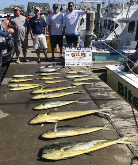 Bite Me Sportfishing Charters, Dolphin, yellowfin, blackfin!