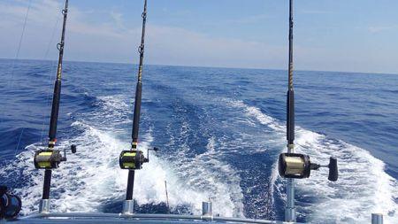 Tuna Duck Sportfishing, Marlin Quest