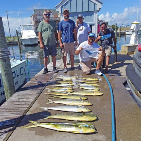 Tuna Duck Sportfishing, Sailfish Release and Dolphin Today