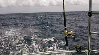 Tuna Duck Sportfishing, Happy 4th of July!