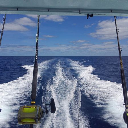 Tuna Duck Sportfishing, Big Rock Over For Another Year