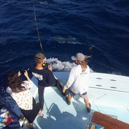 Tuna Duck Sportfishing, White Marlin and Mahi